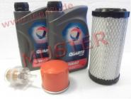 Ligier  - Kleines Inspektionspaket