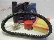 Microcar Virgo, MC1, MC2 mit Lombardini LDW 502 - Großes Inspektionspaket
