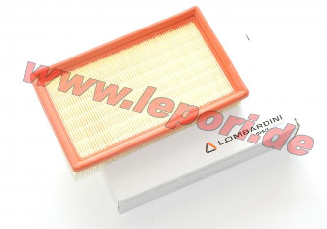 Luftfilter für Microcar mit Lombardini Dieselmotor